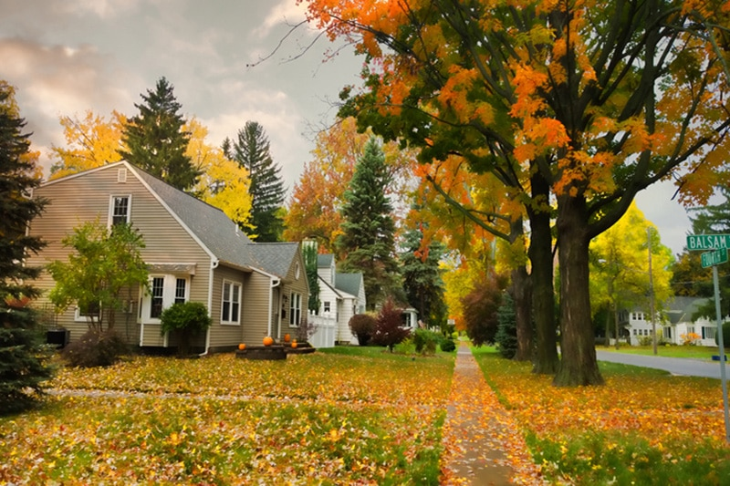 A row of homes with autumn trees out front | Fall HVAC Maintenance | Keep Your Systems Running | Happy Valley, OR